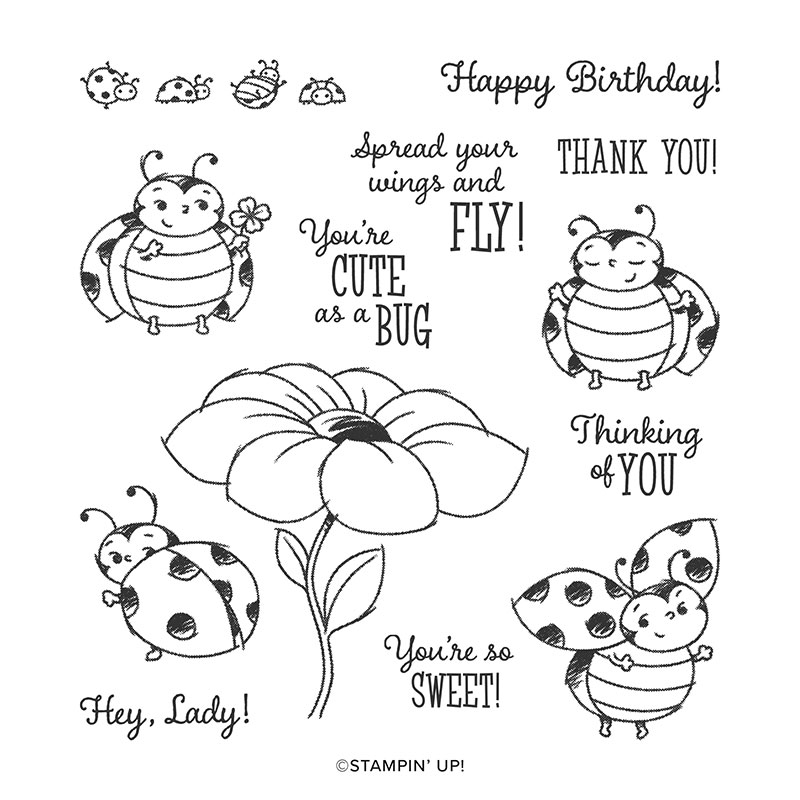 Little Ladybug Stamp Set (Sale-a-bration 2020)