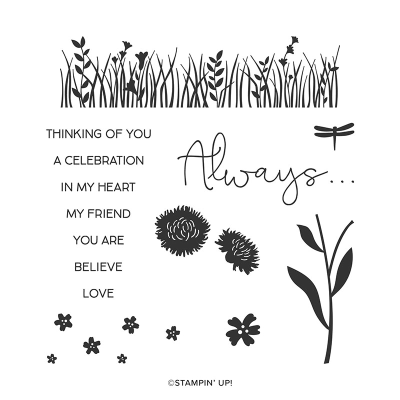 Field of flowers stamp set