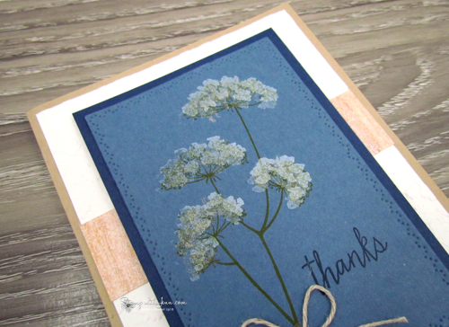 Queen Anne's Lace Stampin' Up! Stamp Set