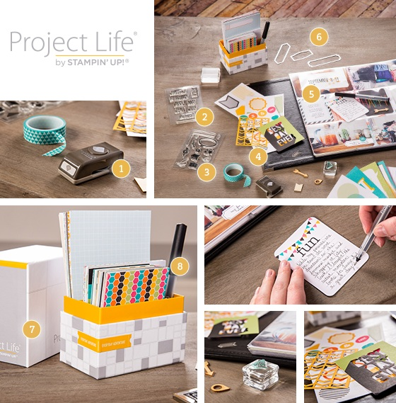 Project life products